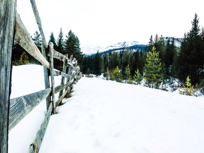 Rule of thirds prospectve snow Taking Photos Rule Of Thirds Relaxing Prospective Snow
