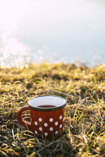 Food And Drink Cup Drink Grass Mug Nature Refreshment No People Coffee Single Object Plant Field Day Coffee - Drink Close-up Selective Focus Hot Drink Coffee Cup Land Landscape Outdoors Polka Dot Tea Cup