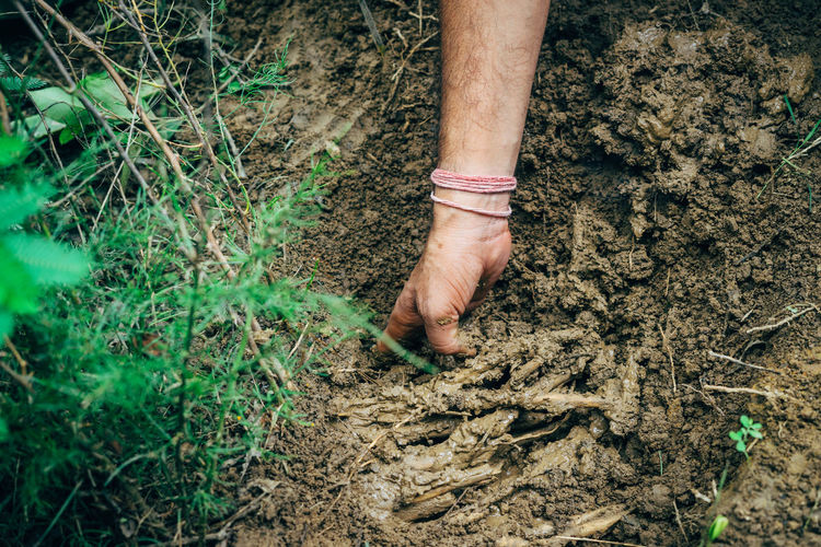 Hand of person holding mud in farm