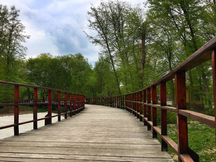 Bridge Railing Tree Wood - Material The Way Forward Outdoors Bridge - Man Made Structure Footbridge Nature Day Sky Cloud - Sky No People Growth Beauty In Nature Forest Wood Paneling