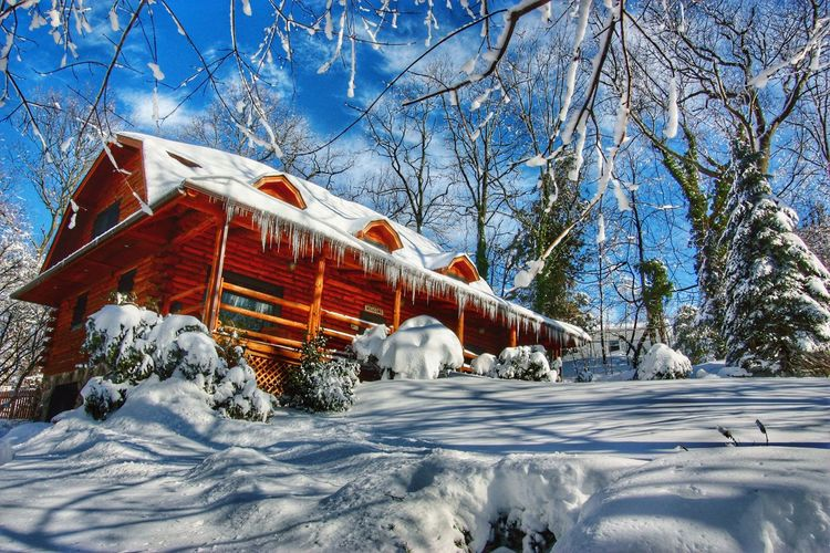 IceStormAtTheLodge-LongIsland,NY Winter Cold Temperature Snow Tree Weather White Color Nature Covering No People Bare Tree Outdoors Day Built Structure Tranquility Frozen Beauty In Nature Sky Branch Architecture Log Cabin Long Island, Ny Vacation Home