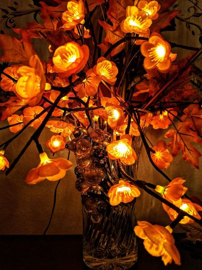 fall themed and illuminated decorations Perspectives On Nature Leaves 🍁 Autumn Maple Leaves Taking Photos Illuminated Indoor Photography Close-up EyeEm Gallery Holiday Decorations No Edit No Fun Indoors  Fall Colors Illuminated Flowers No People Seasonal Decorations Interior Decorating Low Light Low Light Photography