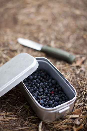 High angle view of blueberries in container