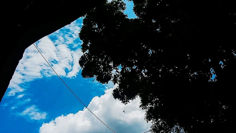 Blue Sky Nature Photography Beautiful Blue Sky☁ Indonesian Photographers Collection by tinamartin First Eyeem Photo