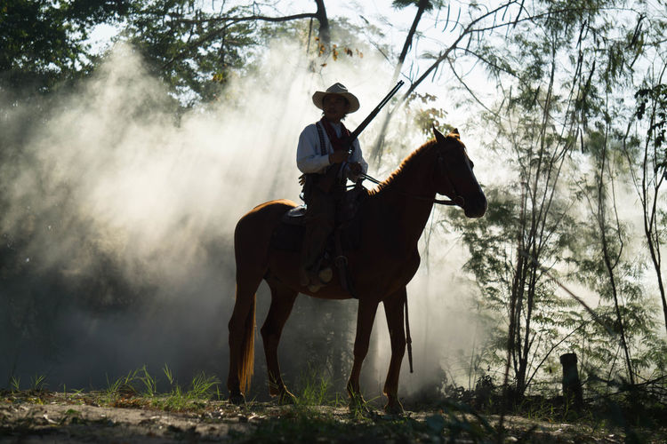Man sitting on horse in forest amidst smoke