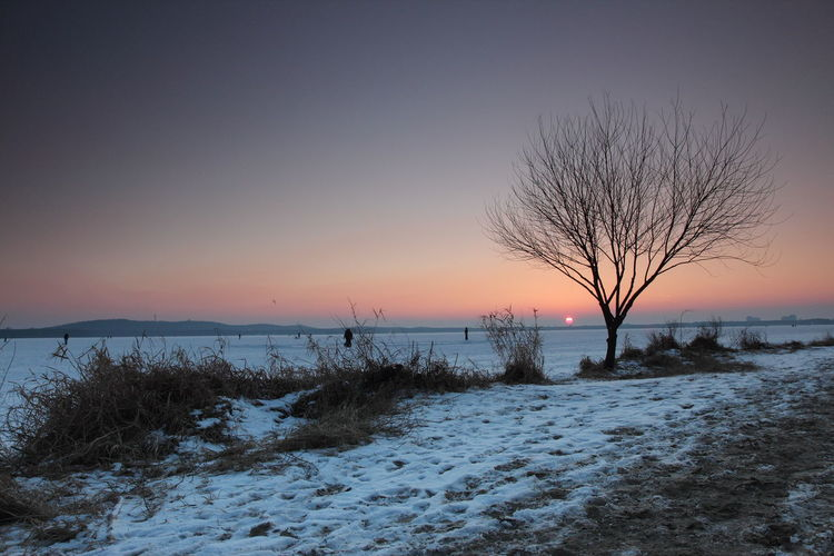 Berlin Müggelsee Berlin Müggelsee Winter Bare Tree Branch Cold Cold Temperature Frozen Horizon Over Water Landscape Nature No People Outdoors Scenics Sea Sky Snow Sunset Tranquil Scene Tranquility Tree Water Weather Winter