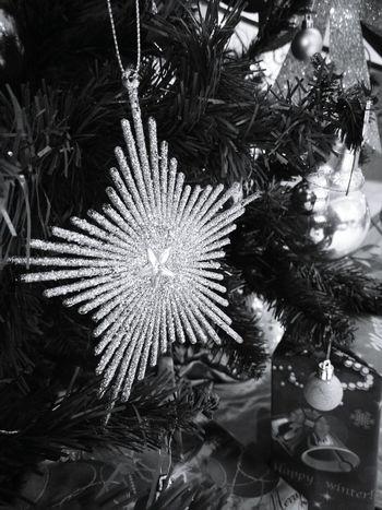 Christmas is coming... Christmas Tree Christmas Lights Christmas Decorations Christmas Around The World Chirstmasphotos Chrismastime Celebration No People Close-up Day First Eyeem Photo