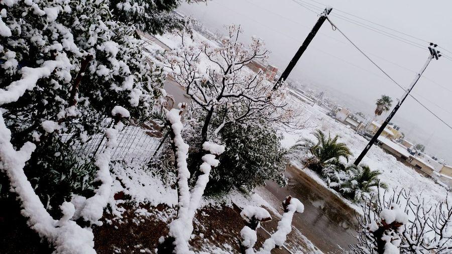 Home Snow ❄ Winter