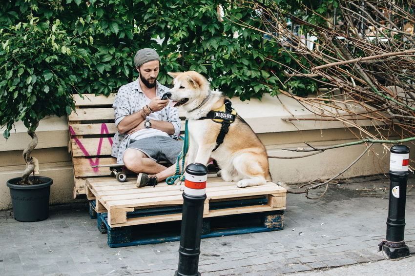 Street Life Adult Day Dog Domestic Animals Mammal Mature Adult Men One Animal One Person Only Men Outdoors Pets Real People Sitting Stories From The City