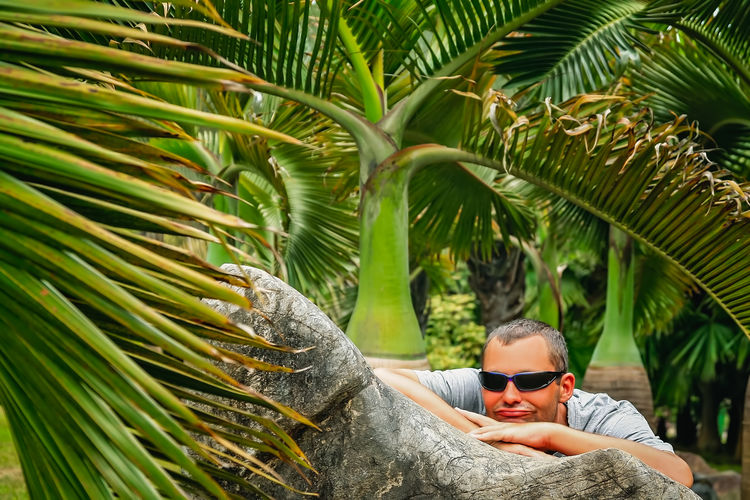Portrait of man with sunglasses on palm tree