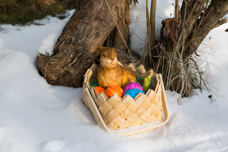 Close-up Day Easter Egg, Basket Healthy Eating No People Outdoors Winter