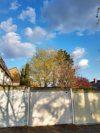 Cloud - Sky Tree Sky Sport Soccer International Team Soccer Water No People Soccer Field Outdoors Day GERMANY🇩🇪DEUTSCHERLAND@ Wiesbaden Hessen Car Garage White Garage Door Garage Trees And Sky Trees Architecture Tree House