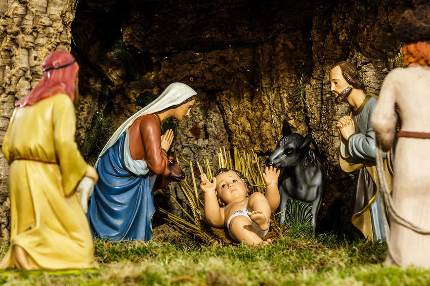 Madeira Island Adults Only Animal Themes Baby Jesus Cheerful Crib Crib Figurine Day Domestic Animals Friendship Full Length Grass Happiness Lying Down Mammal Nature Outdoors People Togetherness Tree