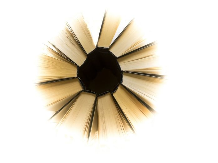 Sunflower Droodle Micro Four Thirds Smart Simplicity