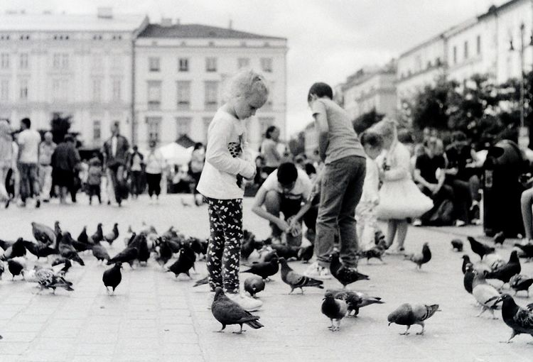 Analogue Photography Birds Blackandwhite Casual Clothing Child Childhood Children Children Having Fun City City Life Day Fomapan Girl Large Group Of People Lifestyles Pentacon Person Pigeon Pigeons Praktica Film Photography Street Streetphoto_bw Streetphotography Togetherness