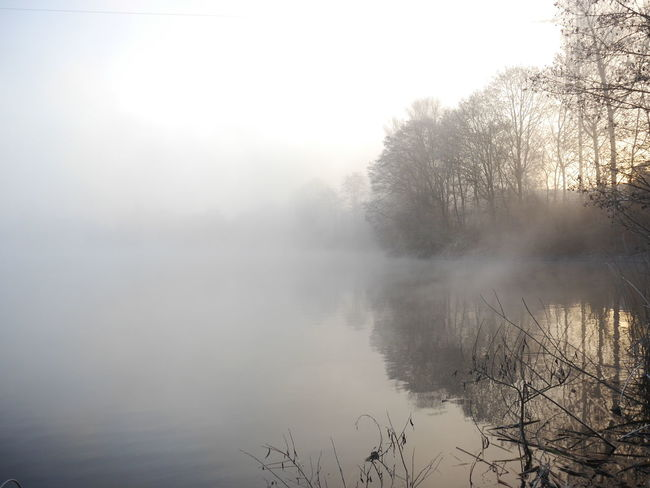 Foggy conditions... Fog Tree Reflection Nature Water Weather Outdoors Lake Tranquility Landscape Sky No People Scenics Beauty In Nature Cold Temperature Day Desaturated Live For The Story The Great Outdoors - 2017 EyeEm Awards