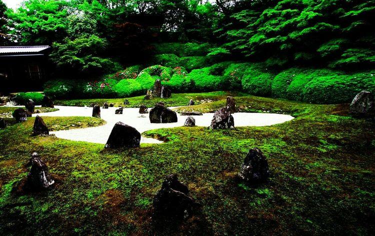 Relaxing Enjoying Life EyeEm Best Shots Photo Around You 禅 京都市