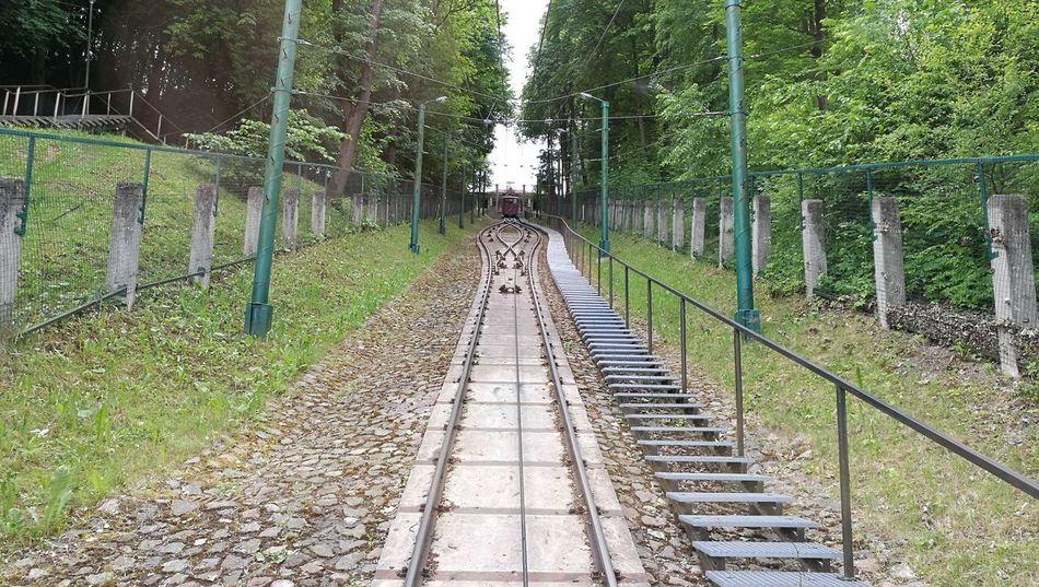 The Way Forward Funicular Kaunas City Aleksotas Trees Road Up