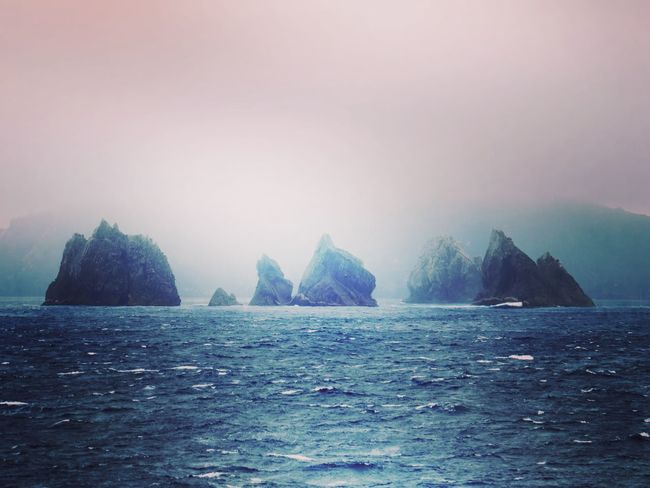 The Snares Untouchable Sub Antarctics The Snares Beauty Water Outdoors Sea Nature No People Beauty In Nature