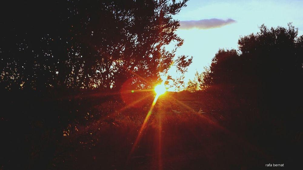 Atardecer en El Campello. Ultimos rayos de sol. EyeEm Nature Lover Landscape_Collection Sunset Nature_collection