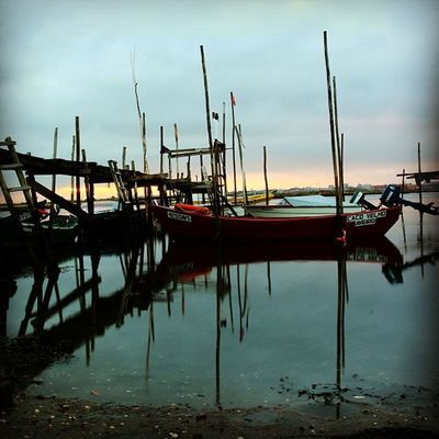 #boat #wharf #morning #dawn #sun #portugal #portugal_de_sonho #portugal_em_fotos #portugaloteuolhar #portugaldenorteasul #igers #igers_porto #igers_aveiro #aveiro #ilhavo #iphone5 #iphonesia #iphonegraphy #instagood #instagram #instalove #instamood #insta Wharf Instagramers Sun Instagood Morning Instadaily Dawn Instalove Canon Iphonegraphy Boat Igers_porto Portugal Portugaldenorteasul Photooftheday Portugaloteuolhar Iphonesia Eos650 Instagram Portugal_lovers IPhone5 Portugal_em_fotos Instamood Ig_portugal P3top Portugal_de_sonho Igers Igers_aveiro Aveiro Ilhavo