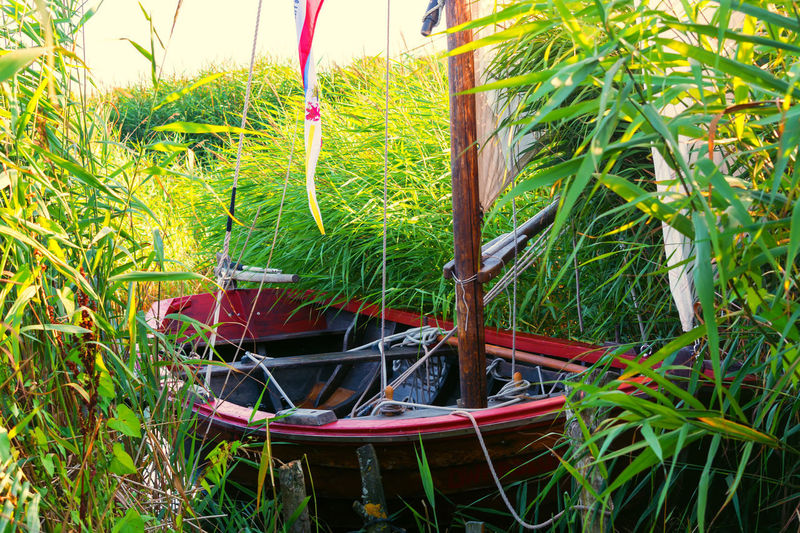 Wooden boat on