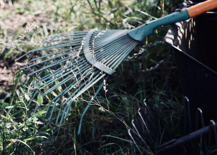 Gardening Fork On Field