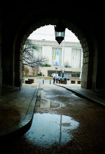 Smithsonian Museum Constitution Avenue Cjfmass Taking Photos Raindrops Washington, D. C. Daylight