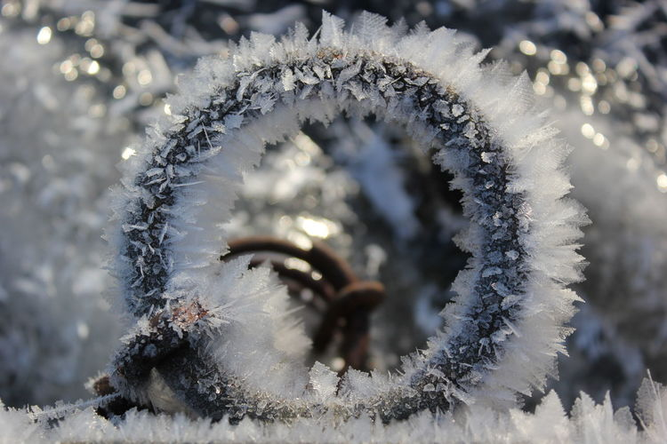 Close-Up Of Frost During Winter