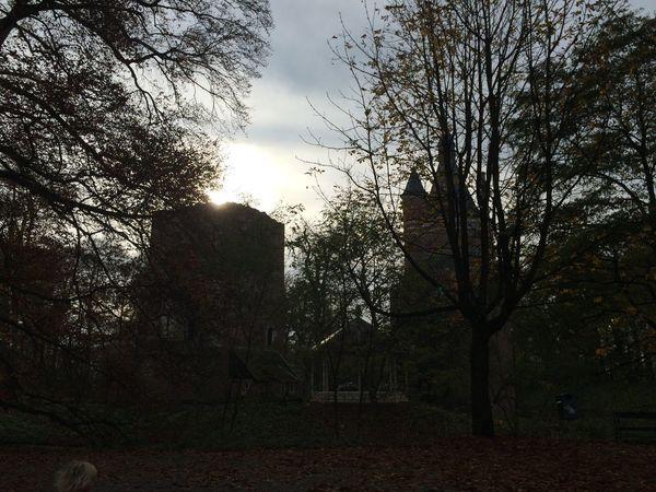 Castle Park Trees Sunshine Sun_collection Sky_collection Skyporn Skyline Nature Architecture Ruins