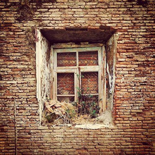 پنجره انزلیچی انزلی گیلان خانه_قدیمی_ایرانی ایران ایرانگردی پنجره_چوبی پنجره_بسته Iran Iranpics Gilan Anzali Anzalichi Oldhouse Oldwindow Window Woodenwindow Closewindow