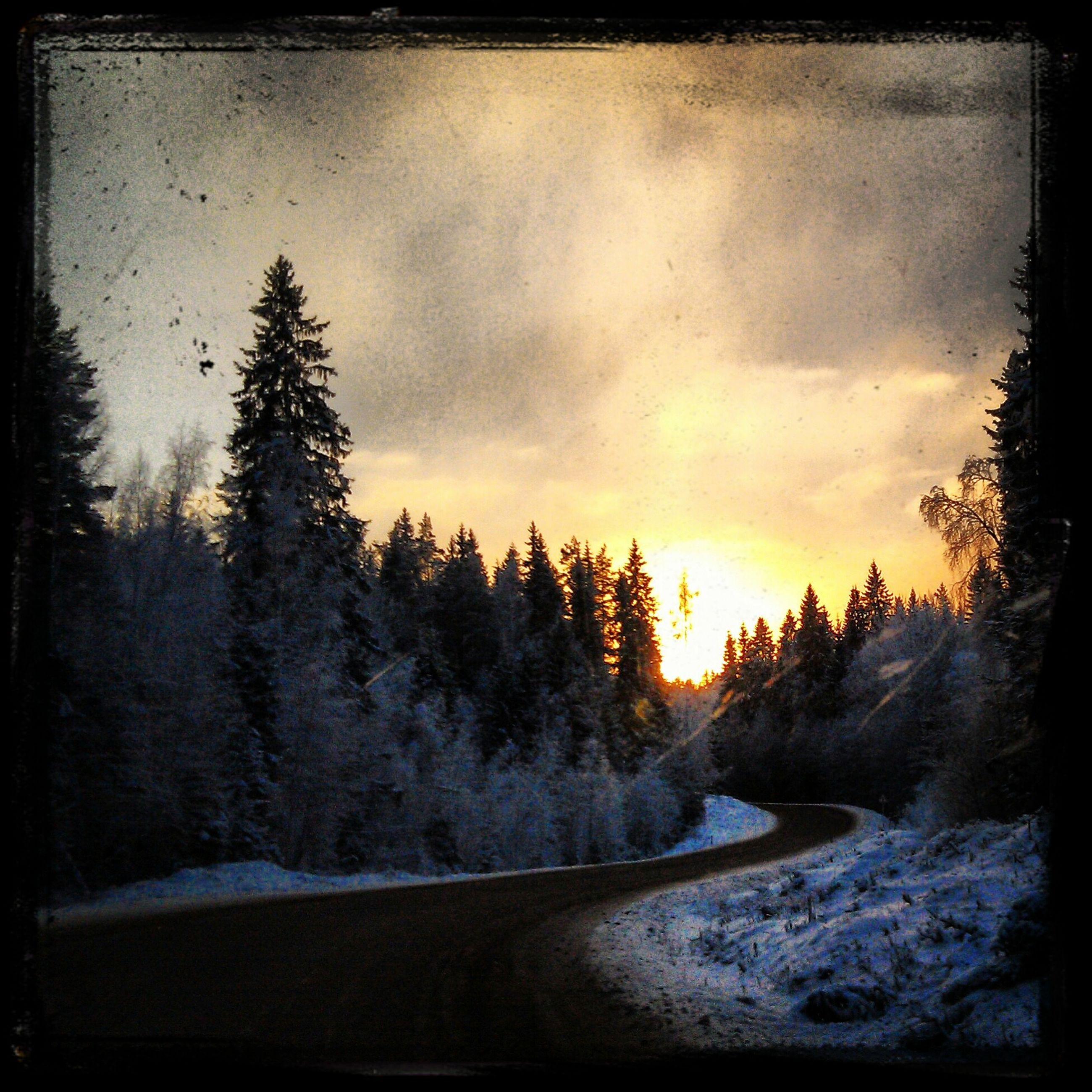 snow, tree, sunset, winter, cold temperature, tranquil scene, tranquility, transfer print, beauty in nature, scenics, sky, season, weather, auto post production filter, nature, silhouette, cloud - sky, landscape, road, non-urban scene