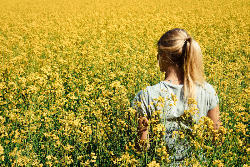 Rear view of young woman standing amidst oilseed rape