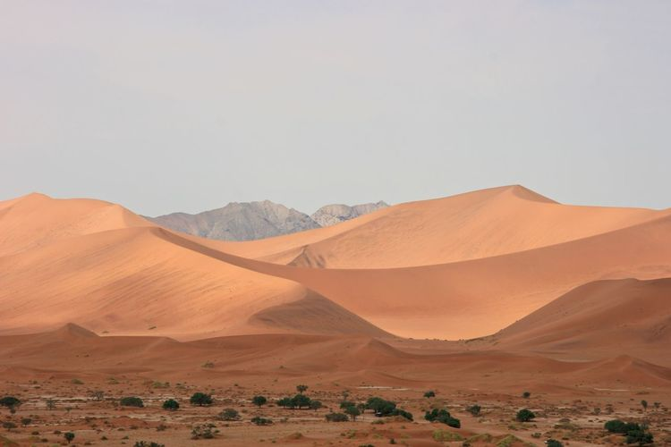 Namib-naukluft national park sand dunes and landscape, namibia.
