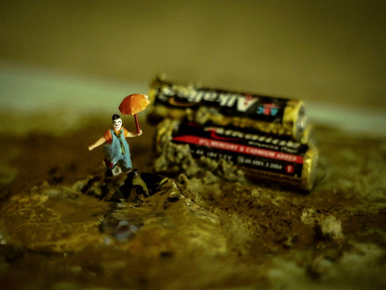 selective focus, toy, human representation, male likeness, figurine, close-up, representation, no people, art and craft, creativity, still life, indoors, nature, day, food, female likeness, small, field, surface level