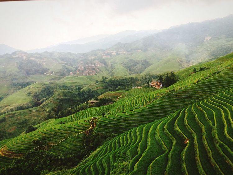 Chinese Mountain