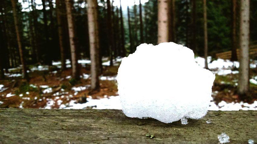 Winter Bílá Hora Love Nature Ball