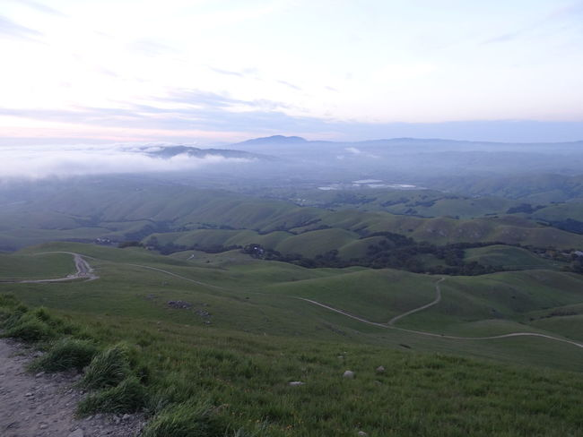 This was not taken with my phone. I cheated and used my wannabe-slr :| Mission Peak