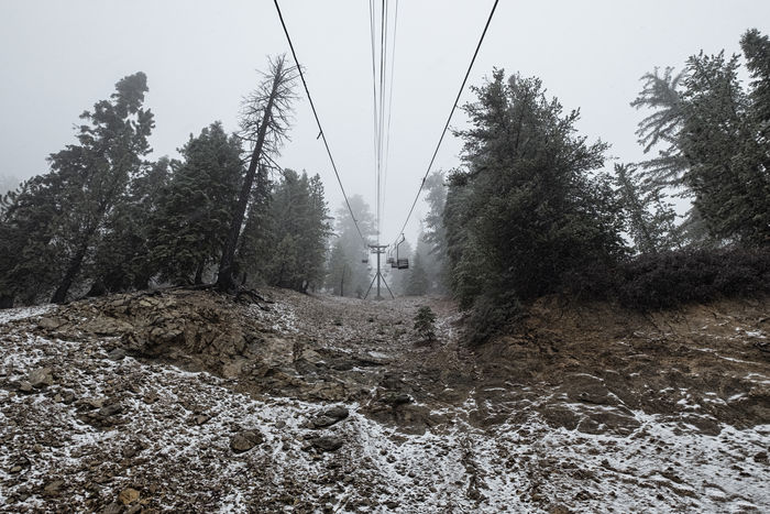 First drop of snow above 6,000 ft, San Gabriel Mountains. Beauty In Nature Cable Connection Day Electricity  Electricity Pylon Forest Nature No People Outdoors Sky Transportation Tree