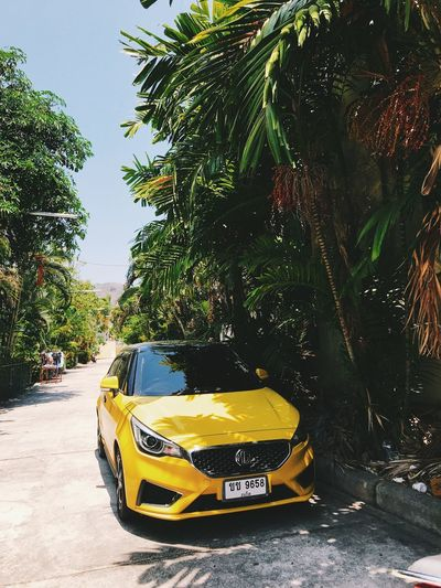 View of yellow car on street
