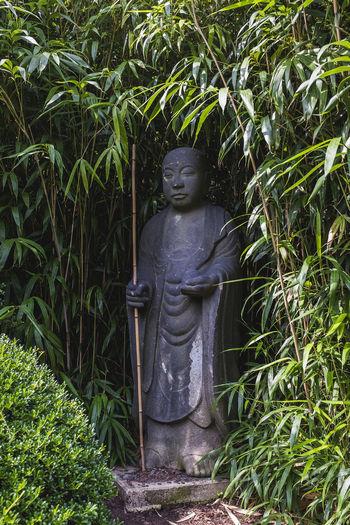 Statue amidst plants