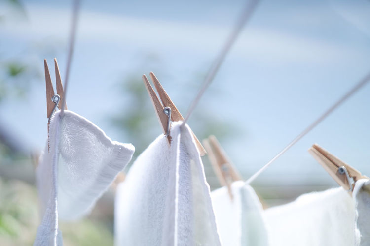 Chores Clean Close-up Clothesline Clothespin Clothing Coathanger Day Drying Drying Clothes Drying Towels Focus On Foreground Fresh Group Of Objects Hanging In A Row Laundry No People Rope Selective Focus Still Life Textile Towels In The Wind White Color White Towels