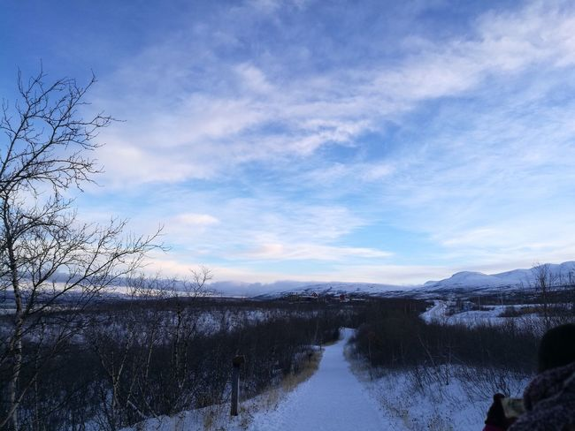Reflection Sky Nature Cloud - Sky Water Lake Outdoors Beauty In Nature No People Winter Landscape Tranquility Mountain Scenics Animals In The Wild Bird Cold Temperature Snow Day Animal Themes Sweden Tranquility Abisko Nationalpark I Love Sweden No Filter