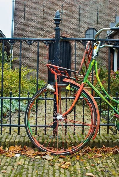 It's like statue.Statue Holand Bike Bicicle Cycle Hoop Netherlads Netherpand Photography Makindu Nature Colors Colorful Colors Of Autumn Colors Of Carnival Amsterdam