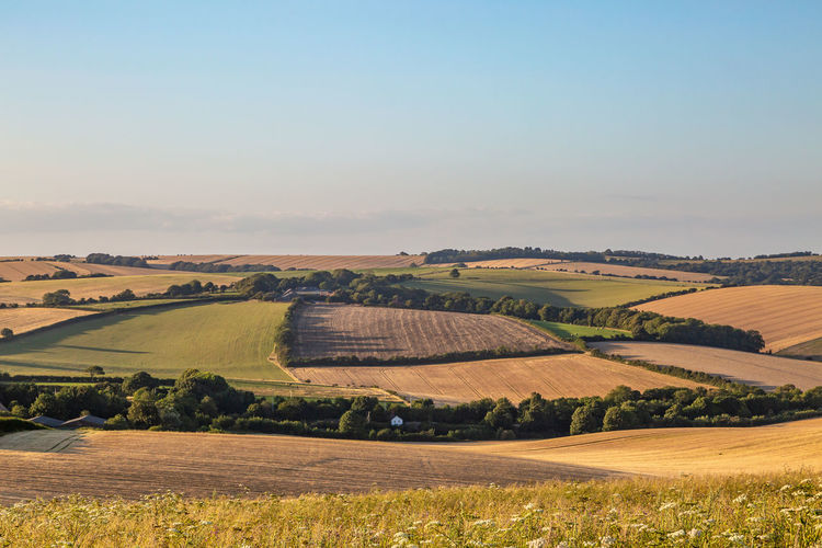 Looking out over sussex farmland on a sunny summers evening