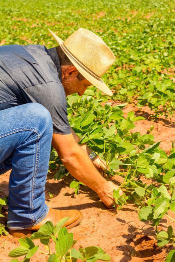 Man working in farm