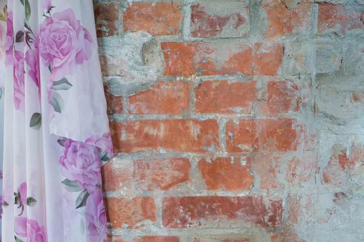 Close-up of pink hanging on brick wall