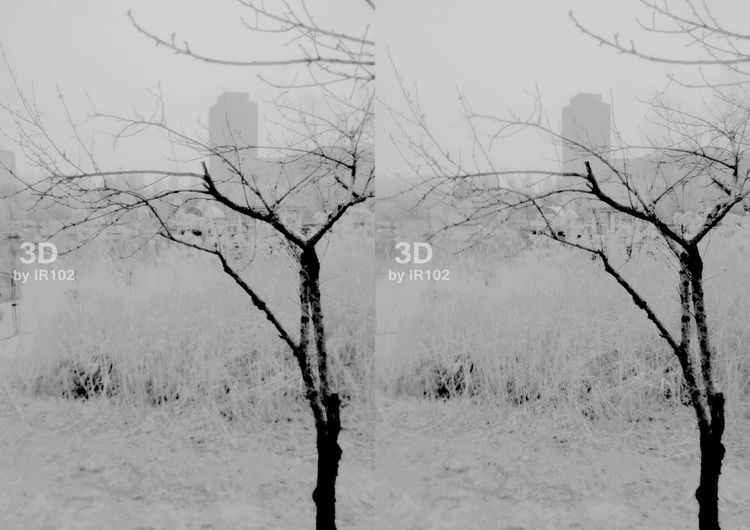 3D, Mobile phone 3D 3D Art 3D Photo 3D Photography 650nm HTC HTC One X HTC_photography IR Infrared Mobile Phone Stereoscopic 3D Testing Camera B&w Photo b&w street photography Infrared Photo Infrared Photography Mobile Phone Camera Mobile Phone Photos Mobile Phones