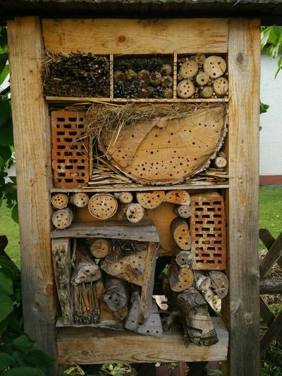 Insects  insect hotel Art Taking Photos Check This Out Growing Up Beautifully Organized