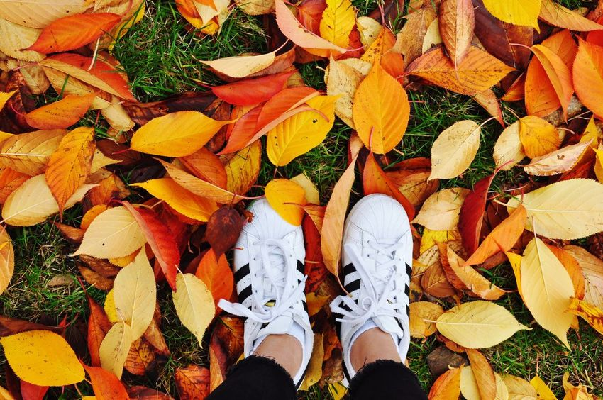 Fall took in 2016 Shoe Autumn Day Outdoors First Eyeem Photo